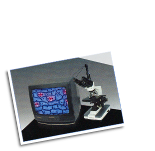 Video Microscope Eyepiece