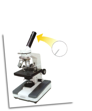Advanced Monocular Microscope